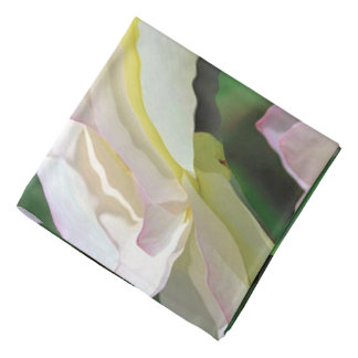 Abstract Background Concentric Flowers Bandana