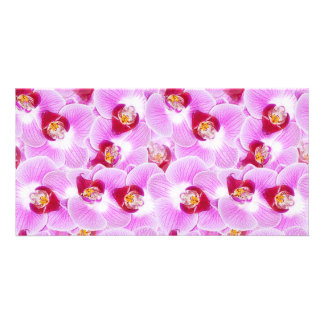 Abstract Background of an Orchid Flower Photograph Photo Greeting Card