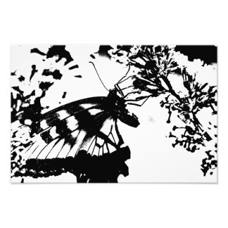 Abstract Black and White Butterfly Print Photo