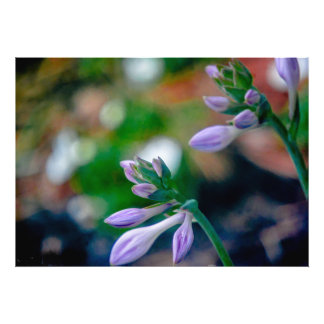 ABSTRACT BLUE SPRING BUDS PHOTO PRINT