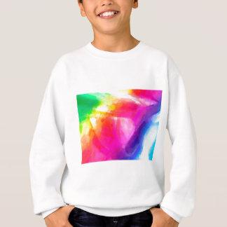 abstract contemporary colors No 29 Sweatshirt