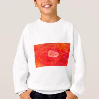 abstract contemporary colors No 53 Sweatshirt