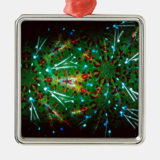 Abstract Crystal Reflect Grace Silver-Colored Square Ornament