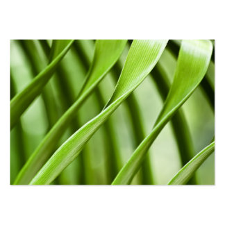 Abstract Fern Fronds - ACEO 16 Large Business Cards (Pack Of 100)