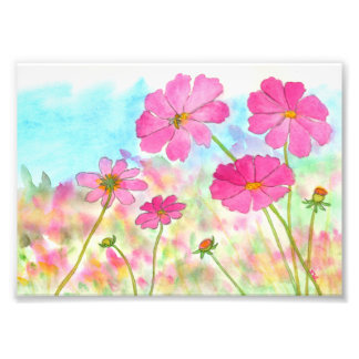 Abstract Floral Art Pink Cosmos Wild Flowers Photo Print