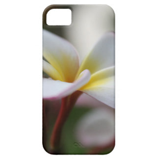 Abstract flower case for the iPhone 5