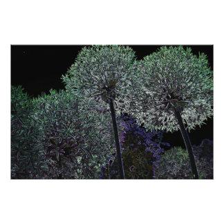 Abstract Flower Art Photo