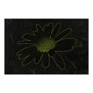 Abstract Flower Photo Art
