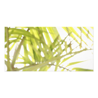 Abstract foliage photo card template