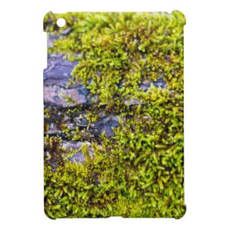 abstract green moss_on wood in winter iPad mini cover