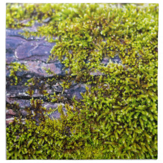 abstract green moss_on wood in winter napkin