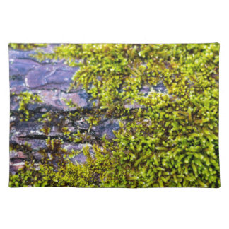 abstract green moss_on wood in winter place mats