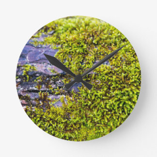 abstract green moss_on wood in winter round clock