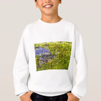 abstract green moss_on wood in winter sweatshirt