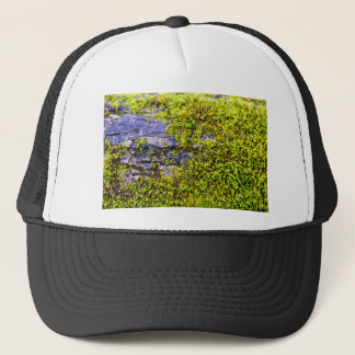 abstract green moss_on wood in winter trucker hat