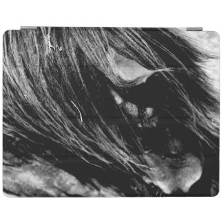 Abstract Horse Mane Photograph iPad Cover