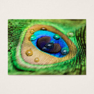 Abstract Macro Peacock Feather Drops Business Card