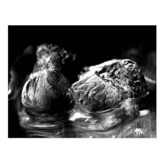 Abstract Melting Ice Cubes in Monochrome Postcard