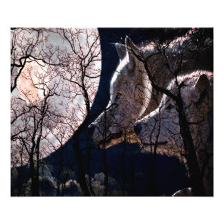 Abstract moon forest wolf tree print photographic print