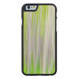 Abstract of Aspen Trees | Yakima River Trail, WA Carved Maple iPhone 6 Case