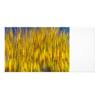 Abstract of Autumn Photo Card