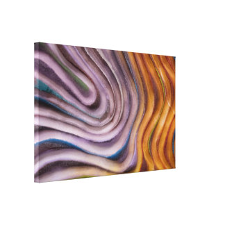 abstract paint swirl canvas print