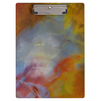 Abstract Petrified Wood close-up Clipboard