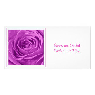 Abstract Photograph of an Orchid Colored Rose Photo Card Template
