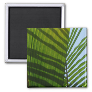 Abstract Photography Green Leaf Refrigerator Magnet