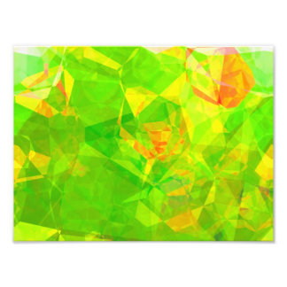 Abstract Polygons 204 Art Photo