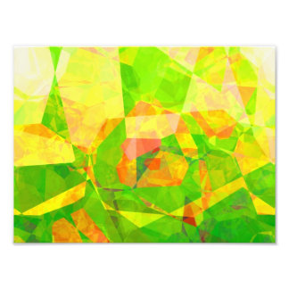 Abstract Polygons 205 Art Photo