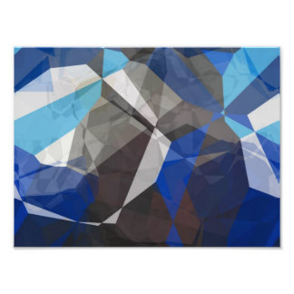 Abstract Polygons 253 Photographic Print
