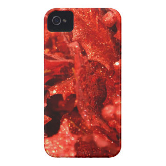abstract red christmas berries iPhone 4 covers