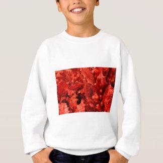 abstract red christmas berries sweatshirt