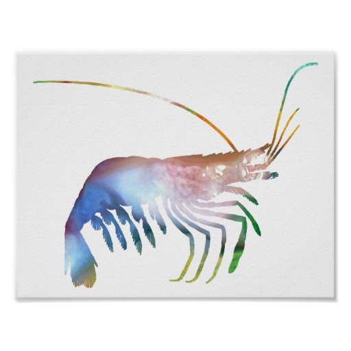 Abstract Shrimp silhouette Poster