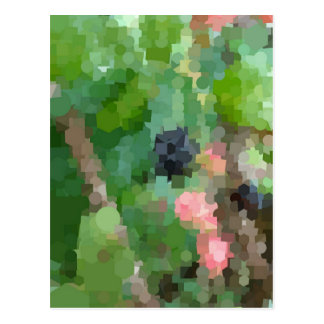 Abstract Summer Blackberry Postcard