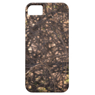 Abstract Tree iPhone 5 Cover