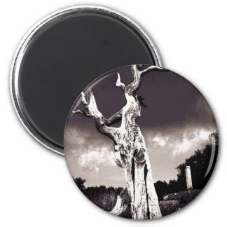 Abstract Tree 2 Inch Round Magnet