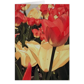 Abstract Tulips Note Cards