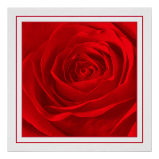 Abstract Vivid Red Rose Center Floral Photography Poster