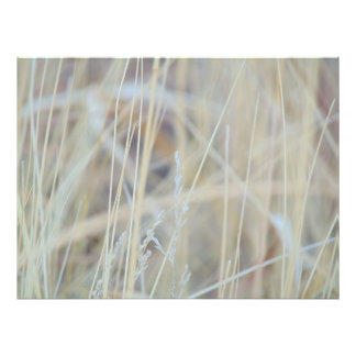 Abstract Winter Grass Photo Print