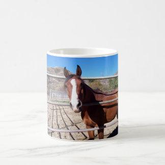 abu magic mug