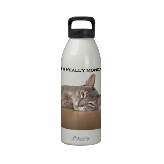 Abyssinian Brown Funny Cat Hates Monday Drinking Bottle