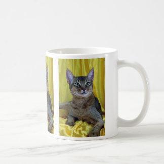 Abyssinian, usual coffee mug