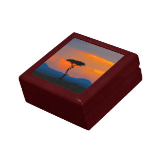 Acacia & Sunset over Masai Mara Gift Box