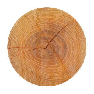 Acacia Tree Cross Section Glass Chopping Board Cutting Boards