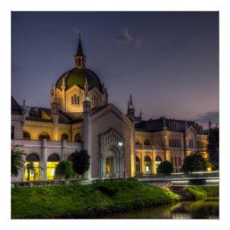 Academy of Fine Arts, Sarajevo, Bosnia and Herzego Poster