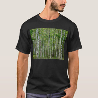 Acadia Birches T-Shirt