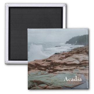 Acadia Magnet - 2