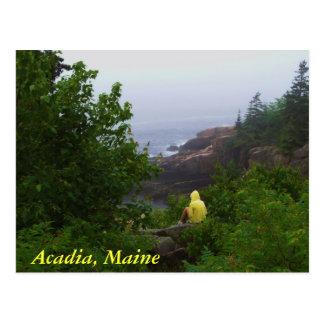 Acadia, Maine Postcard